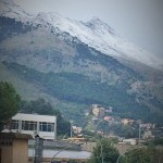 Neve Palermo